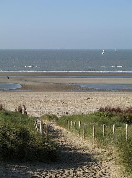 Dunes de Flandres By Marc Ryckaert (MJJR) (Own work) CC BY 3.0 via Wikimedia Commons