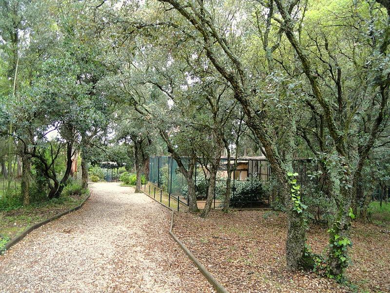 Jardin Zoologique Tropical Par Daderot [Public domain] via Wikimedia Commons