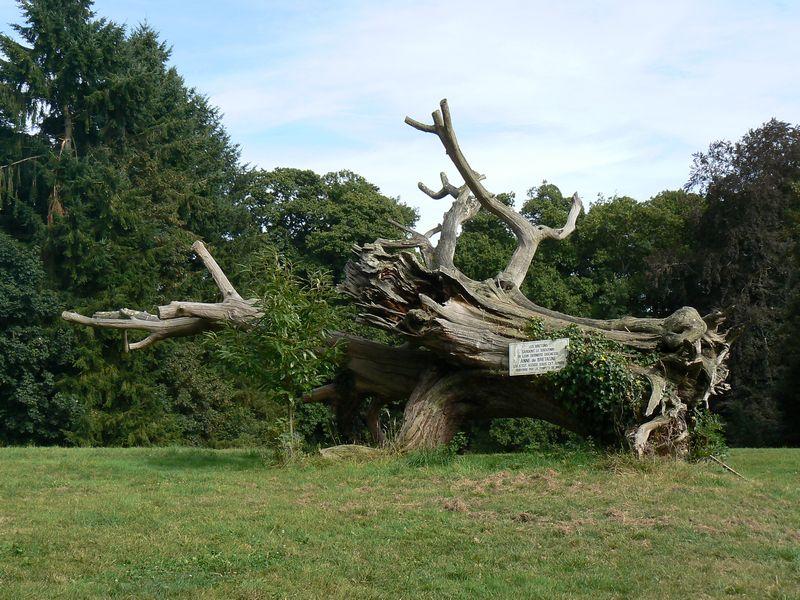 Parc du château de Bonnefontaine By Koalanouk (Own work) via Wikimedia Commons