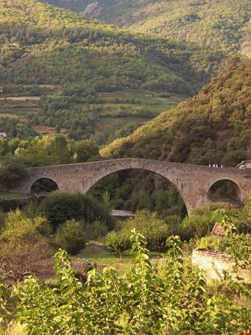 le pont du diable - Olargues (source : wiki)