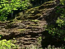 Cascade de la Tufière (Hte Marne)