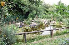 Site Terrarium de Kerdanet Vivarium