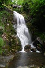Cascade de Magenta