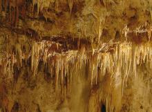 La Grotte de la Draye Blanche