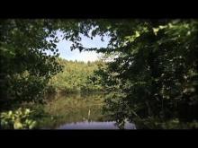 Vidéo du Val sans retour