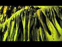 Vidéo sur les Grottes d'Isturitz et d'Oxocelhaya