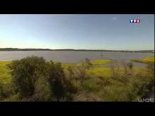 Le Marais d'Orx en vidéo