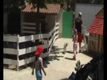 Parc de la Coccinelle en vidéo
