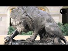 Ménagerie du Jardin des Plantes en vidéo
