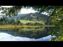 Vidéo Lac de Lispach et Tourbieres