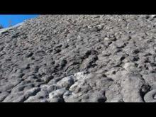 Vidéo de la Dalle à Ammonites
