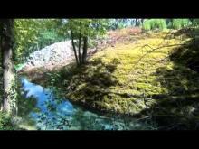 Vidéo de la Tufière de Rolampont