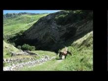 Vidéo La Grotte d'Harpéa