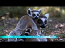 Parc Animalier de Labenne Océan en vidéo