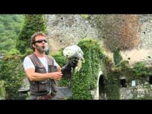 Le Donjon des Aigles en vidéo