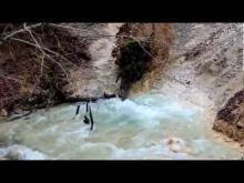 Vidéo Le Cul du Cerf