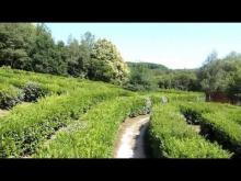 Le labyrinthe géant de Gueret en vidéo