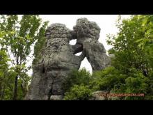 Vidéo du bois de Païolive
