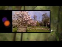 Parc floral de la Source en vidéo