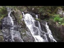 Vidéo Cascades de Tendon