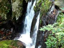 Vidéo de Cascades sur la Savoureuse