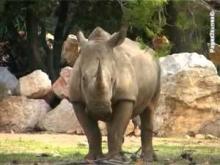 Parc zoologique de la Barben en vidéo