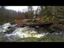 Vidéo Cascade de Brisecou