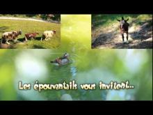 La Forêt des épouvantails en vidéo