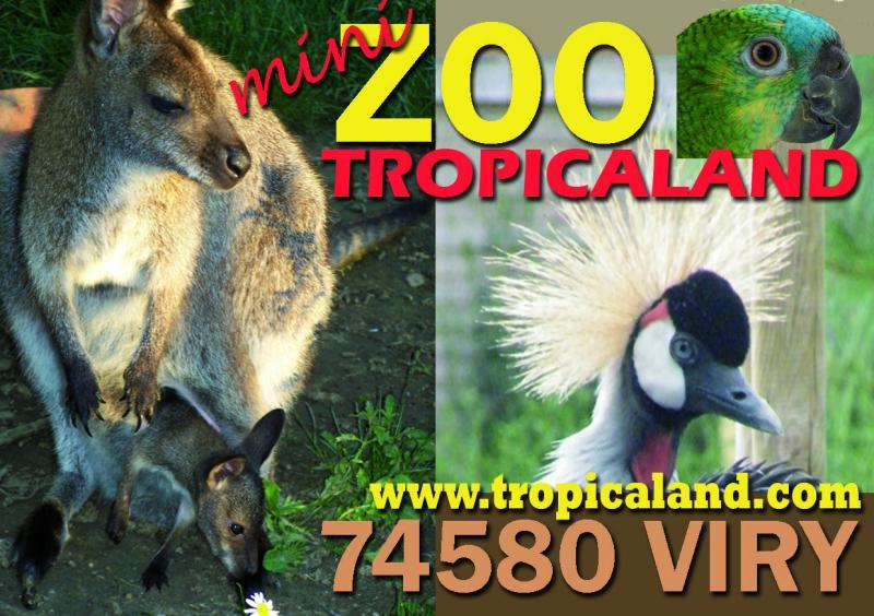 Tropicaland