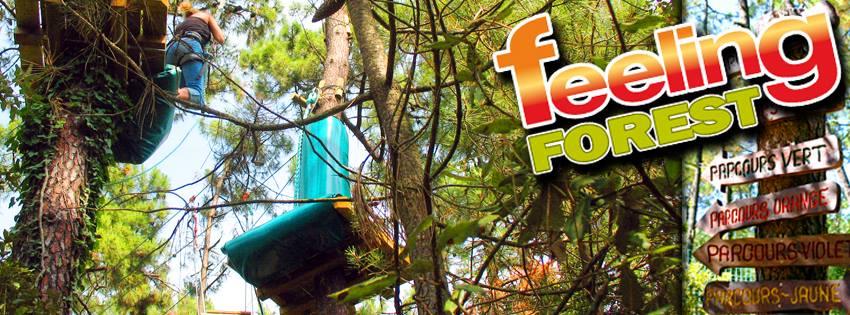 Feeling Forest photo de notre evasion vendeenne