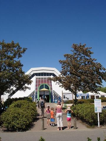 Aquarium de Vannes By --Pinpin 09:45, 15 August 2006 (UTC) (Own work) CC BY-SA 2.5 CC-BY-SA-3.0via Wikimedia Commons