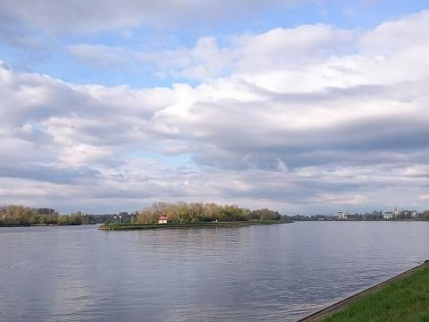 Promenades en barque à fond plat sur l'ile de Rhinau Par Elisabeth Hirlimann CC BY-SA 4.0 via Wikimedia Commons