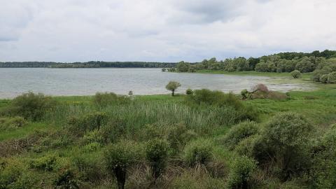 Croisières du Lac d'Orient Par Tangopaso via Wikimedia Commons