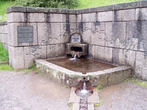 Sources de la Moselle