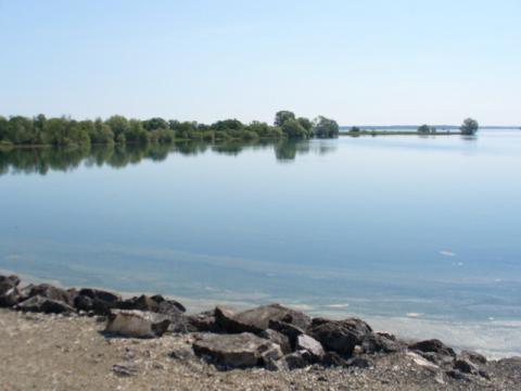 Lac du Der CC BY-SA 3.0 Uploaded by Enslin