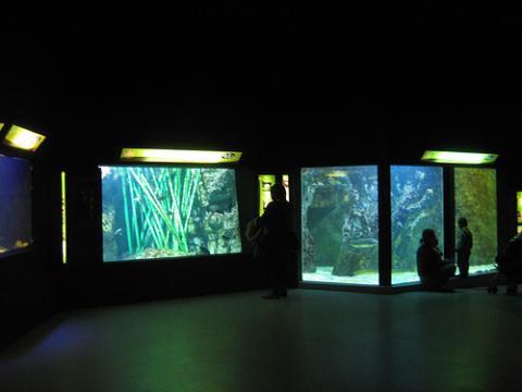 L'Aquarium du Grand Lyon By Aurelie Chaumat via Wikimedia Commons