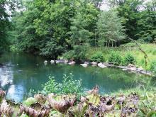 Source du Loiret