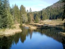 Lac de Lispach et Tourbieres