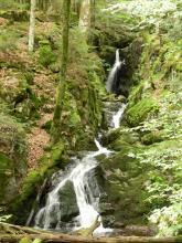 Saut de la Truite - Massif des Vosges