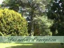 Parc de Martinvast en vidéo