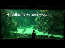 Océanopolis en vidéo