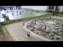 La ferme marine en vidéo
