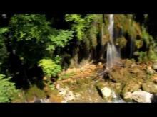 Vidéo du saut du Loup