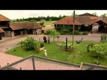 Parc Animalier de Sainte-Croix en vidéo