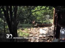 Parc Animalier de Borce en vidéo