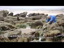 Vidéo du Cap Gris-Nez